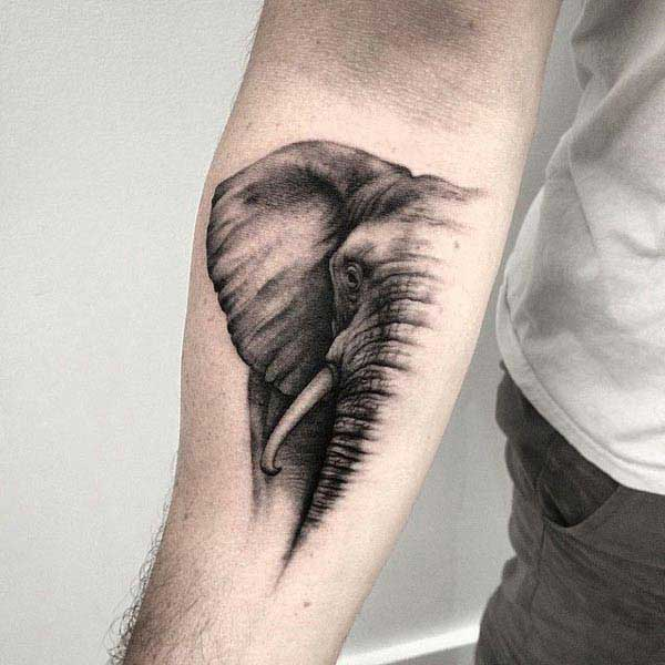 elephant tattoo on arm