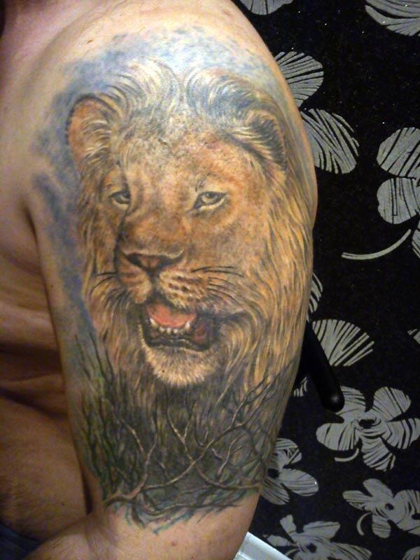tattoos of lion