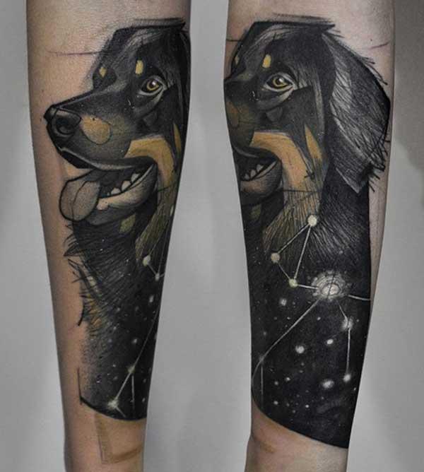 татуировки за кучета