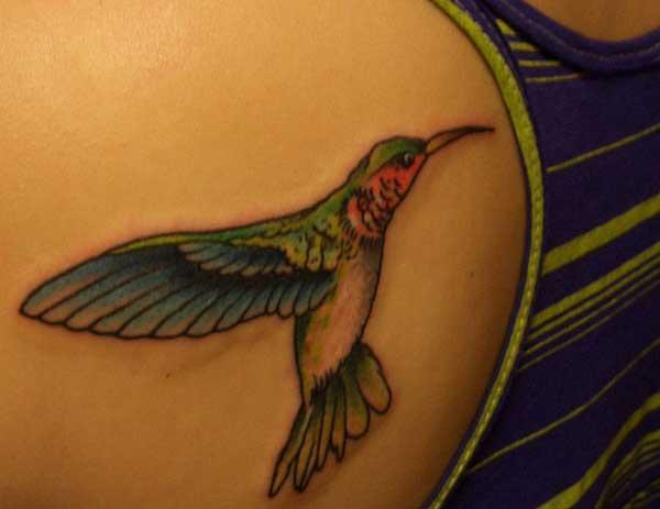 zoo tshaj plaws hummingbird Tattoos