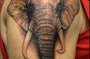 best-elephant-tattoo-08