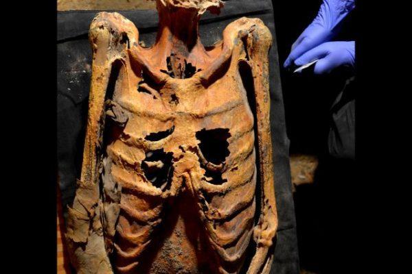 толори зани mummy