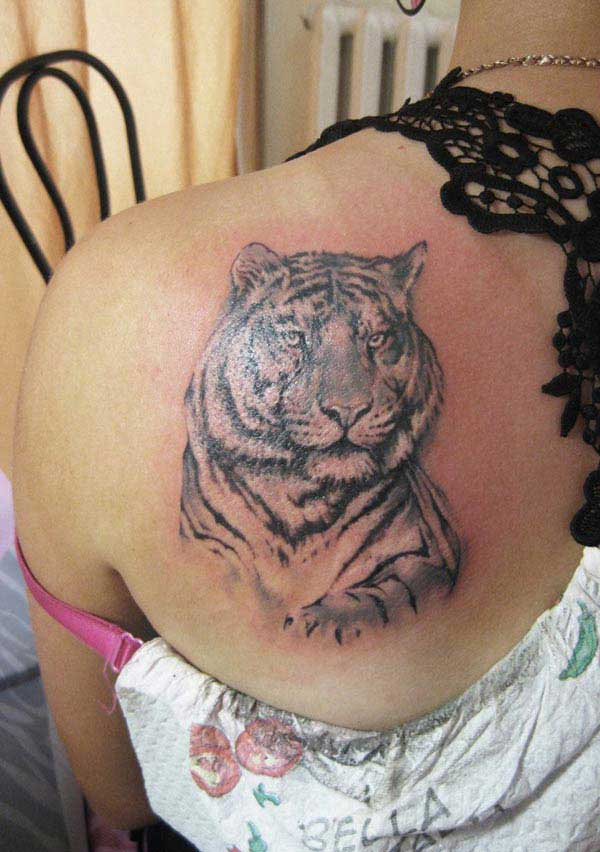 tiger designe tattoo
