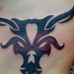 najbolja ideja dizajniranja bikova tetovaža