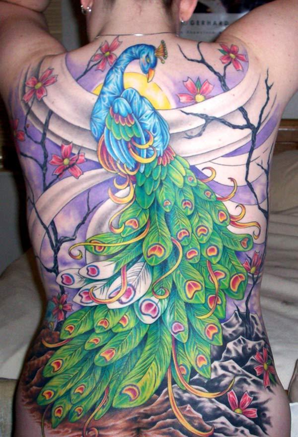Peacock Tattoo ຢູ່ດ້ານຫລັງເຮັດໃຫ້ຍິງທີ່ຫນ້າຮັກ