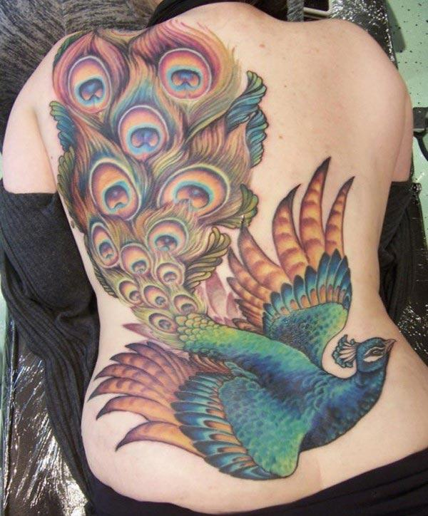 48 Peacock Tattoo Design Ideas: Peacock Tattoo Design Ink Ideas For Men And Women