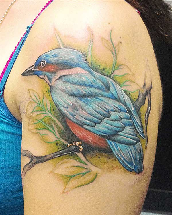 Bird tatoo pou zepòl la bay gade nan kaptif nan ti fi