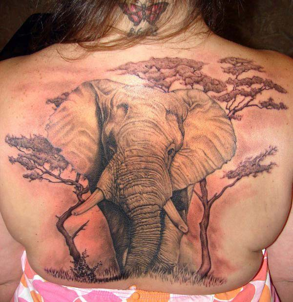 Elephant tattoo on the back brings the elegant gaze
