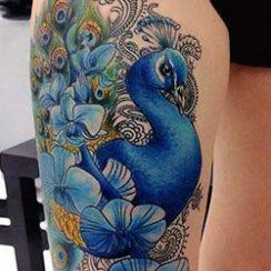 Mellores tatuajes de pavo real para mulleres